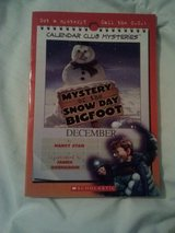 Mystery of the Snow Day Bigfoot in Camp Lejeune, North Carolina