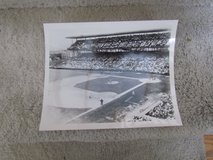 Wrigley Field Photograph 8x10 in Lockport, Illinois