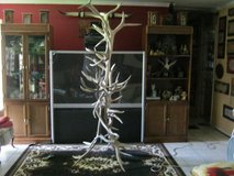 ELK / DEER ANTLER ART in Baytown, Texas