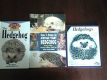 Hedgehog Books in Chicago, Illinois
